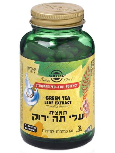 תמצית עלי תה ירוק סולגאר