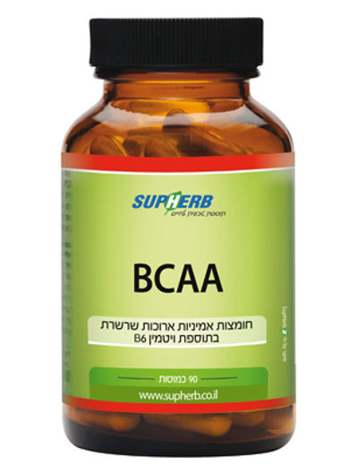 BCAA חומצות אמיניות סופהרב